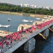 """La """"Pink Ribbon Walk"""" a rassemblé 4.000 personnes le 27 septembre dernier à Singapour. ©Breast Cancer Foundation"""