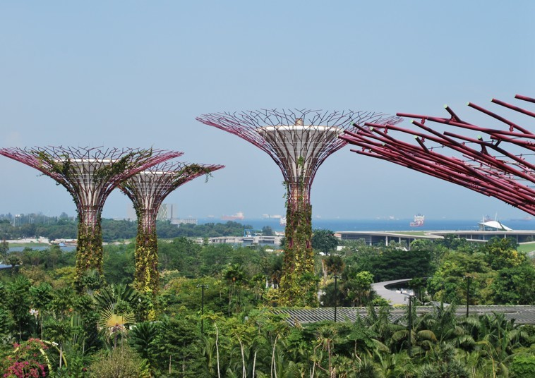 Gardens by the Bay ©Colombe Prins