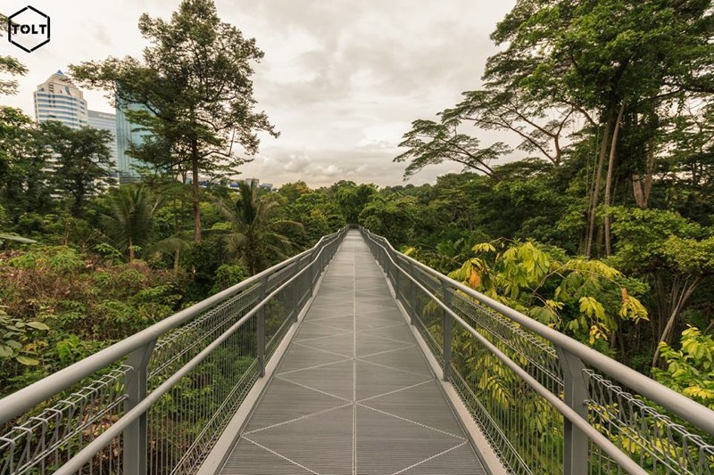 Singapour vue par Benjamin Martinie. ©Tolt